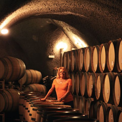 Wine cellar with barrels underground