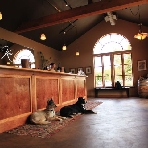 Kaiamie winery inside with two dogs in lobby