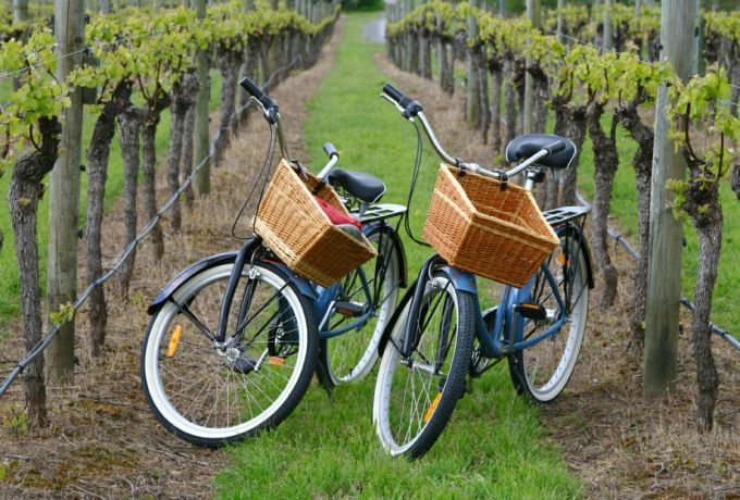 Bike Tour & Wine Tasting Package